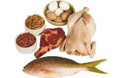 Самые легкие диеты - белковая диета