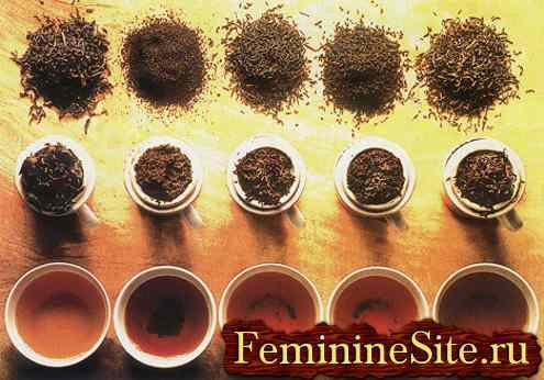 какой чай полезнее
