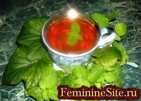Чай с мелиссой - напиток от различных болезней и проблем