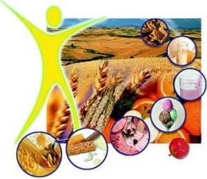 Пищевые волокна