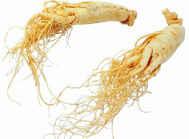 Растения Водолея - эмоциональная и физическая помощь организму. Фото